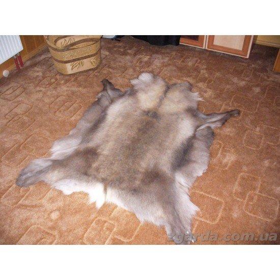 Шкура оленя 160х120 (ШО 01-15)